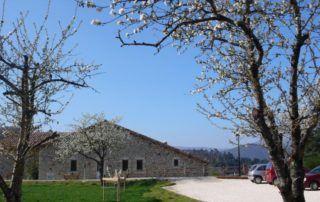 Fabras : place des cerisiers
