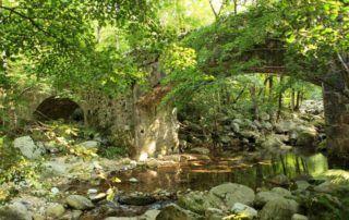 La Souche : Pont la Bidousse