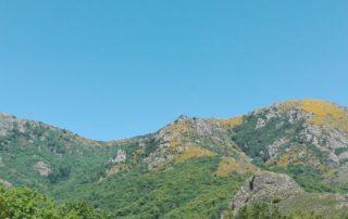 Aire de service camping-car au camping Les Rives de l'Ardèche