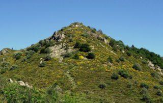 Mont Aigu