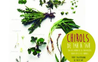 Balade plantes comestibles - Simple et Sauvages
