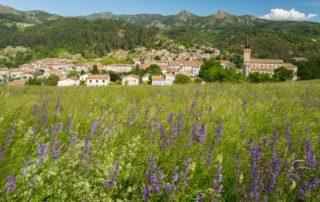 Jaujac - Le village vu de Rochemure