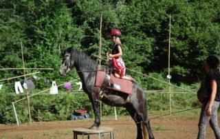 Al Tempo, école équestre: voltige, éducation débourrages, balades à poney.