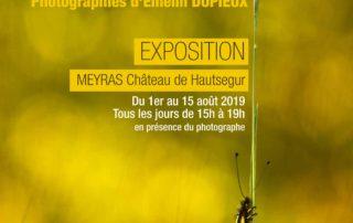 Libellule exposition Emelin DUPIEUX juill Hautsegur