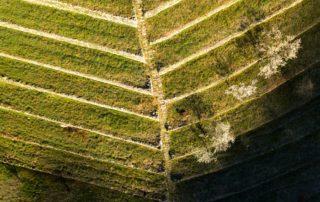 Saint-Pierre-de-Colombier - Terrasses d'Aulureyres ©S.BUGNON