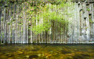 Fabras - Orgues basaltiques dans la vallée du Lignon-2 ©S.BUGNON