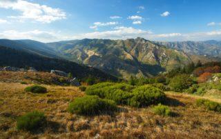 La Souche - Massif du Tanargue - Vallée du Lignon ©S.BUGNON