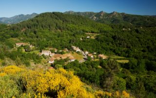 Village of St Cirgues de Prades