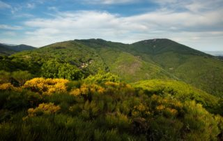 Chirols - Montagne Sainte Marguerite