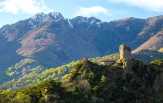 Montlaur Schloss
