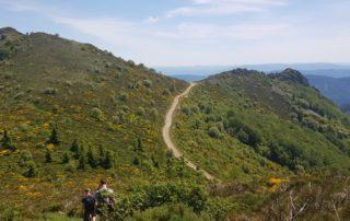 La Tour du Mont Aigu